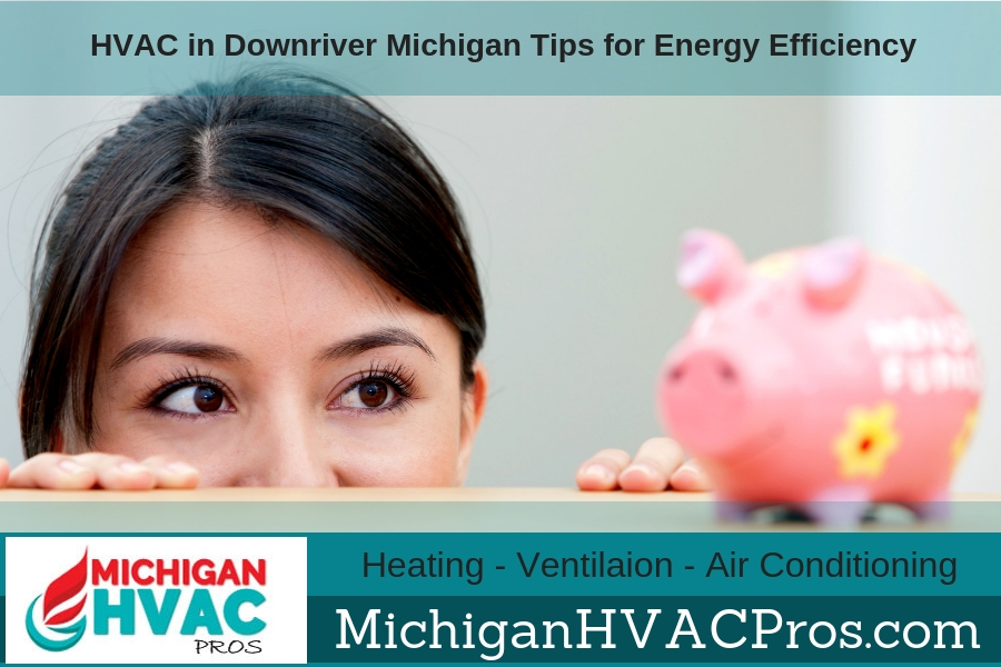 HVAC in Downriver Michigan Tips for Energy Efficiency